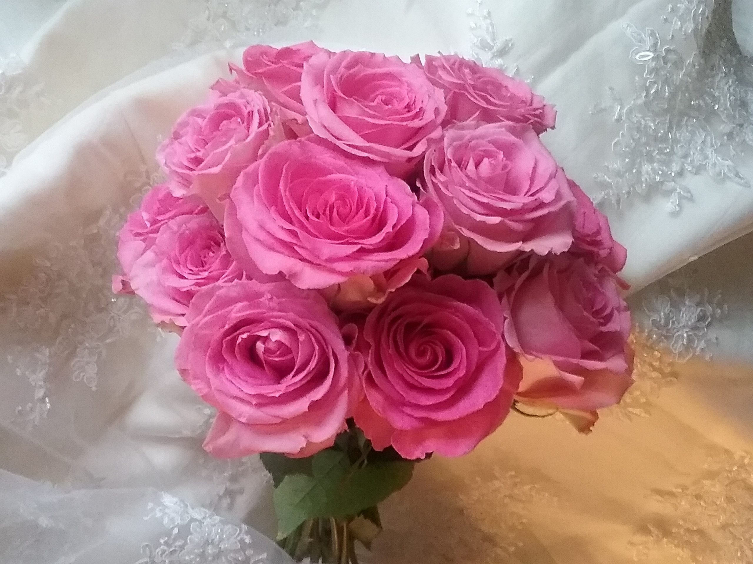 Roses to create Tranquillity